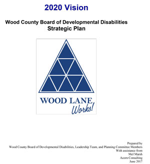 2020 Vision Plan Strategic Plan Image